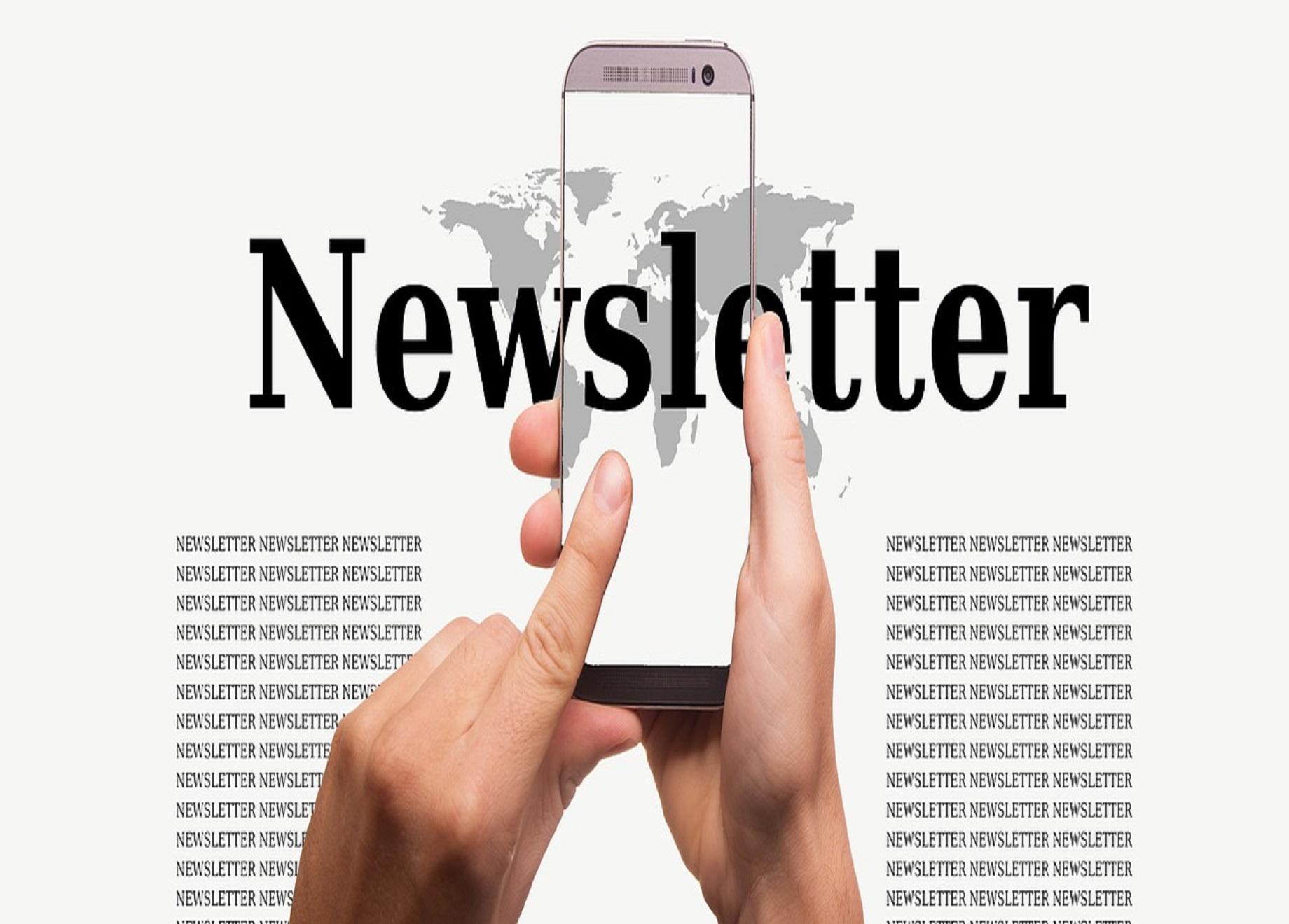 bvvp Newsletter